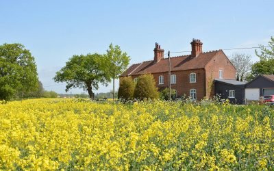 Coronavirus, Currency, Cancellations and Cottages
